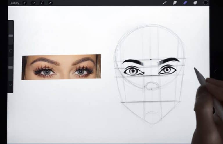 reference picture and final sketch of high-arched and rounded eyebrows How to draw faces tutorial example procreate easy tutorial