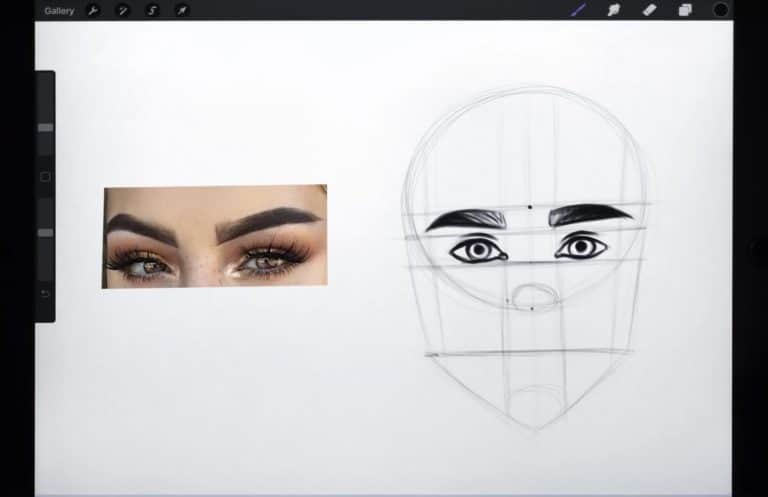 Reference picture and final sketch of a pair of thick, hairy eyebrows How to draw faces tutorial example procreate easy tutorial
