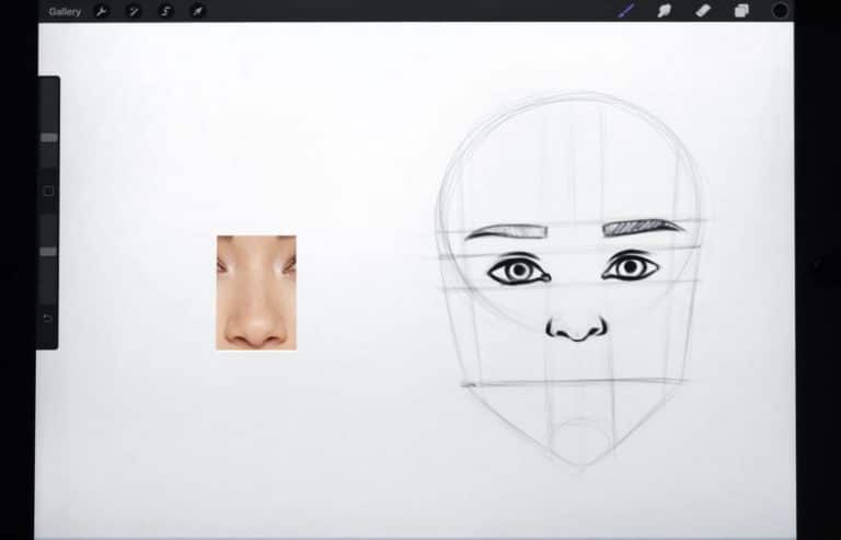 reference picture and final sketch of an upturned nose How to draw faces tutorial example procreate easy tutorial