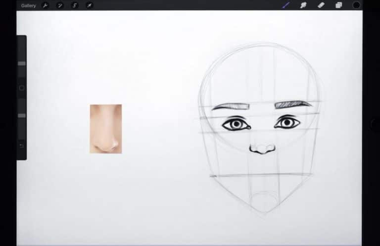 reference picture and final sketch of a downturned nose