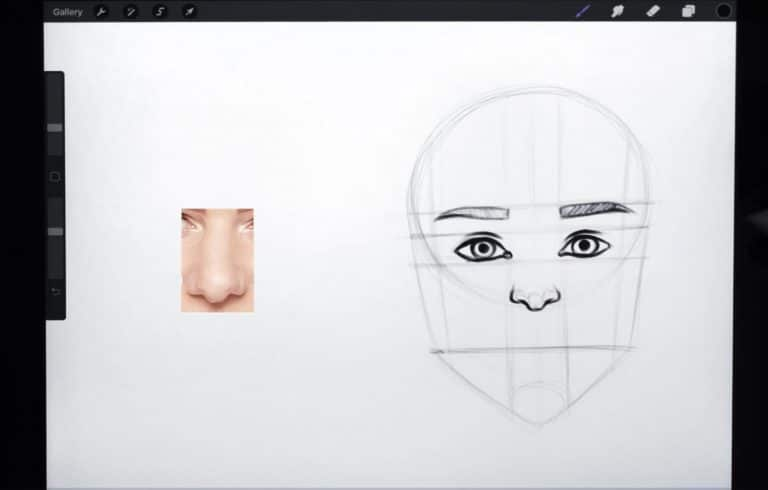 reference picture and final sketch of a pointy nose