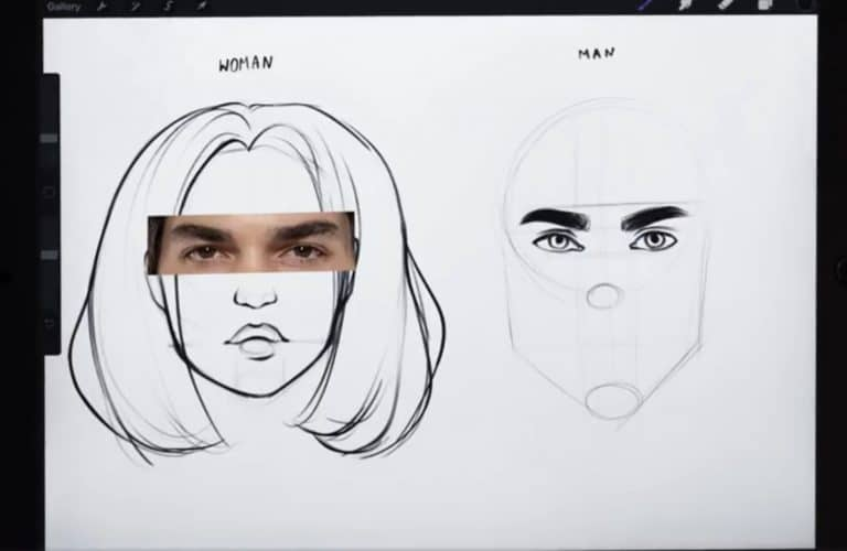 reference picture and final sketch of a pair of high-arched eyebrows How to draw faces tutorial example procreate easy tutorial